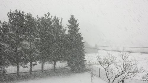 Śnieżne szaleństwo - 24 lutego 2018