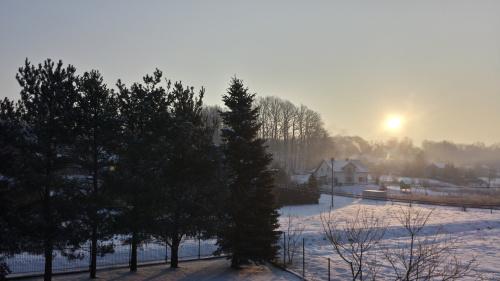 Wiosna Stulecia budzi się do życia - 1 marca, godzina 7