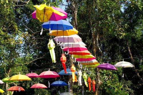 Parasolki...... nanana ........