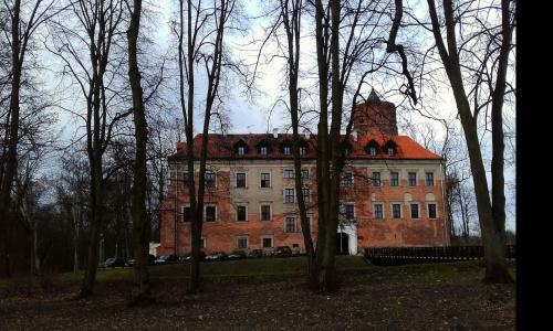 Zamek w Uniejowie – jeden z głównych zabytków Uniejowa. Zamek wybudowany został w latach 1360–1365 na miejscu starej fortalicji drewnianej, zniszczonej podczas najazdu Krzyżaków na miasto w 1331. Inicjatorem budowy zamku był abp gnieźnieński
