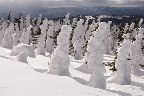 Zamęczam Was zimą w Górach Izerskich, ale za to nie oczekuję komentarzy :)