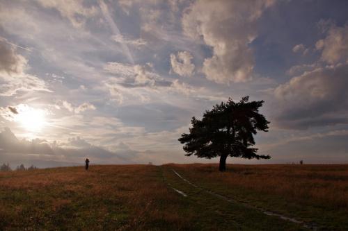 Z tego miejsca zdjęć cała szuflada :) To takie wyjątkowe miejsce, w którym stoi fotogeniczne drzewo, rozciągają się wokół piękne widoki, a nad nim zazwyczaj piękne niebo...:)