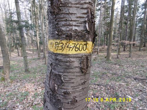 https://images92.fotosik.pl/166/6273a701ba72f53fmed.jpg