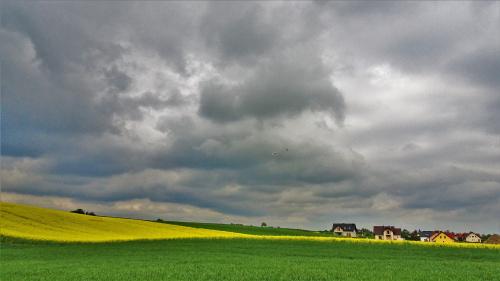 Krajobraz Kociewia.