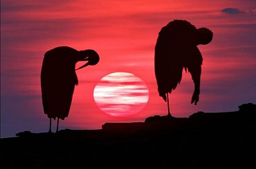Fotopojedynek - zachód słońca