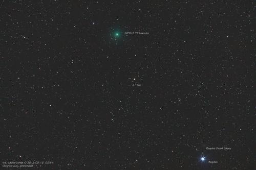 Kometa C/2018 Y1 Iwamoto #kometa #c2018 Y1 #iwamoto #chojnice #noc #gwiazdy #pomorskie #astrofoto