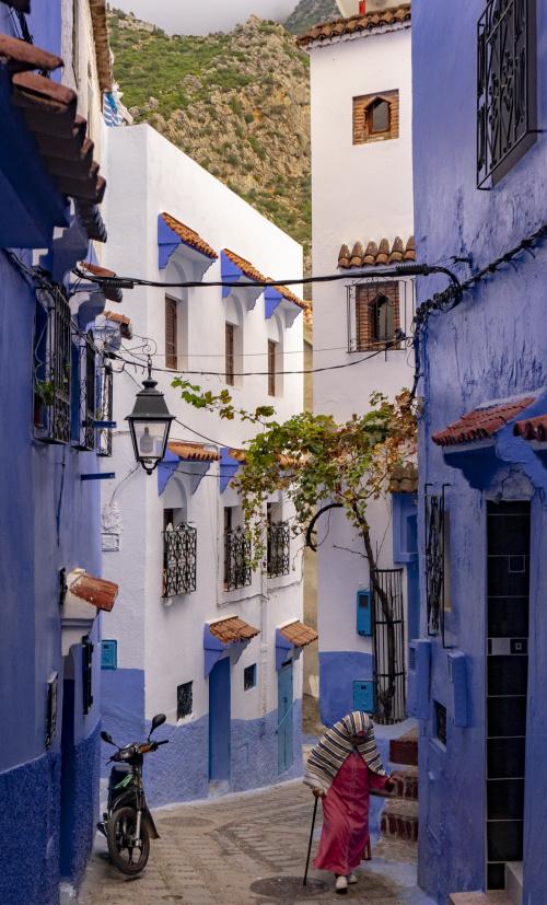 Błękitne Miasto 1