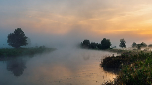 Spowite mgłą