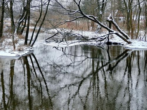 ...nazajutrz zima wygląda bardziej zimowo...