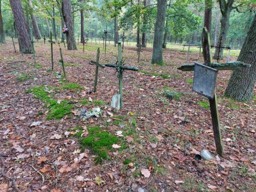 Cmentarz przyszpitalny20