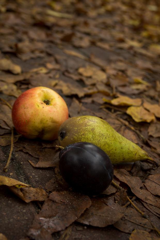 Jesienne owoce