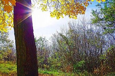 Barwy jesieni.